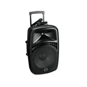 PA System Wireless inc 2 Microphone